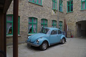 Blauer Käfer III von Richard Pruim