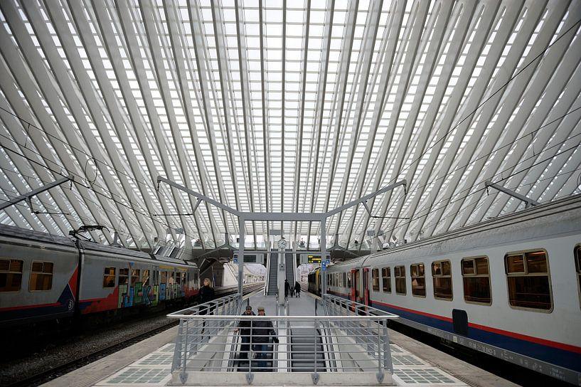 The train at station Liege van Brian Morgan