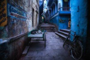 Slapende hond op handkar in sloppenwijk van Varanasi. Wout Kok One2expose von Wout Kok