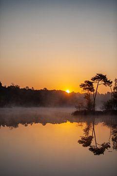 Sonnenaufgang von Miranda Geerts