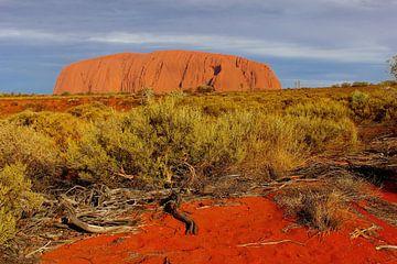 Majestätischer Berg, Australien von Inge Hogenbijl