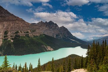 Peyto Lake Banff NP van Ilya Korzelius