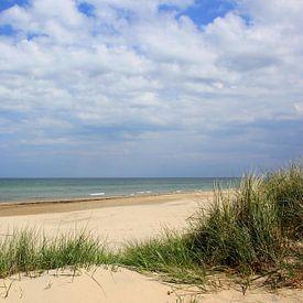 Paysage de dunes sur Ostsee Bilder