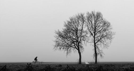 Eenzame fietser van Frans Batenburg