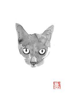 weiche Katze