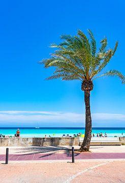 De vakantie van het de zomerstrand bij kustpromenade van toeristenoord in Cala Millor, het eiland va van Alex Winter