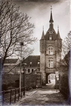 Der Lekpoort in Vianen von Jan van der Knaap