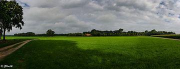 Panorama  van Jan Beukema