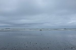 'Pacific ocean', Washington