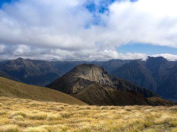 Neuseeland - Te Anau - Sonnenlicht fällt auf einen Berggipfel im Fiordland National Park von Rik Pijnenburg