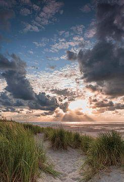 Texel aan zee van Marcel Hof