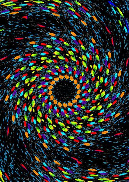 Farbenwirbel van Rosi Lorz