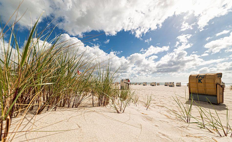 Baltic Sea Dunes van Dirk Thoms