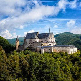 Kasteel in Vianden, Luxemburg von Roy Poots