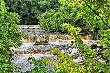 Aysgarth Upper Falls - Waterfall van Gisela Scheffbuch