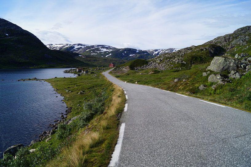 Am Rande des Jostedalsbreen van Bohnes Norwegenliebe