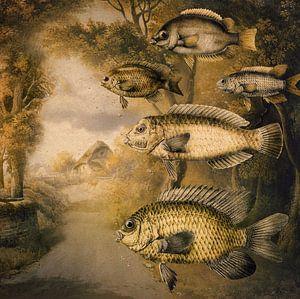 Vissen in vlucht