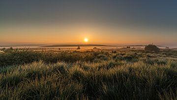 Sonnenaufgang im Hohen Venn von Koos SOHNS   (KoSoZu-Photography)