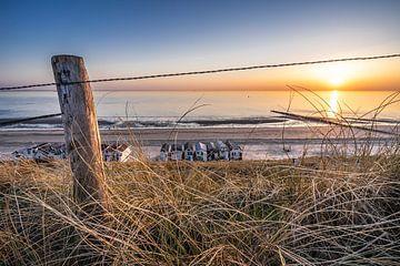 Het strand van Jolanda Bosselaar