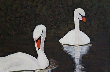 Schwanenpaar I van Babetts Bildergalerie