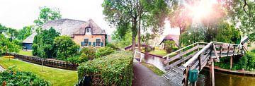 summer panorama of  dutch village von Ariadna de Raadt