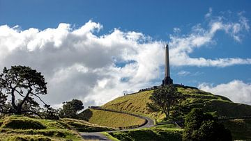 One Tree Hill, Auckland van Erwin de Roo