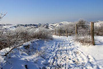 Winterduinen... van Bert - Photostreamkatwijk