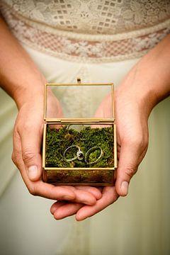Weddingrings van Lindsey Post