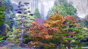 Herbstnebel van