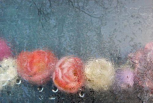 Bevroren bloemen van