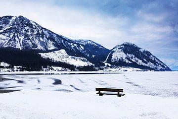 Winterlandschap aan de Traunsee in Oostenrijk