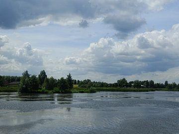 Bomen aan het meer von Sanne Compeer