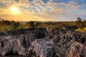 Tsingy Madagaskar tijdens zonsondergang
