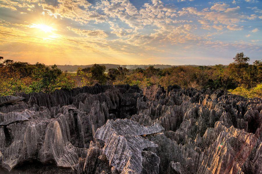 Tsingy Madagaskar tijdens zonsondergang van Dennis van de Water