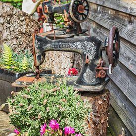 Old sewing machines sur Gunter Kirsch