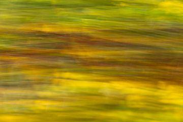 Beweging in de bladeren van Dokra Fotografie
