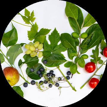 Flat lay met verse groentes en fruit uit de tuin van Hilda Weges