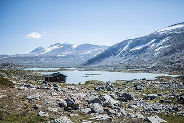 Norwegische Hochebene von Mariska Nauta