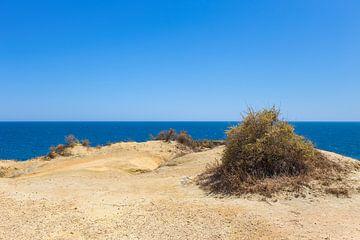 Kale vlakte met zand aan kust in Portugal van Ben Schonewille