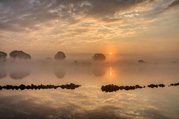 Nebliger Morgen von R. Maas
