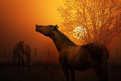 Der Duft des Herbstes von Joachim G. Pinkawa