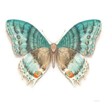 Breekbare vleugels Butterfly III, Danhui Nai van Wild Apple