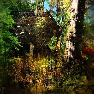 Aporien IV (Natur ruft) von Elwin Staal