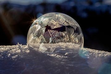 Frozen bubble 2021 van Stefanie van Dijk