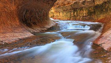 Die U-Bahn im Zion Nationalpark, Utah, USA von Henk Meijer Photography