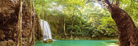 Waterval in de jungle van Nic Limper