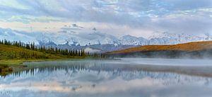 Denali berg in Alaska van