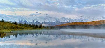 Denali Berg in Alaska von Menno Schaefer