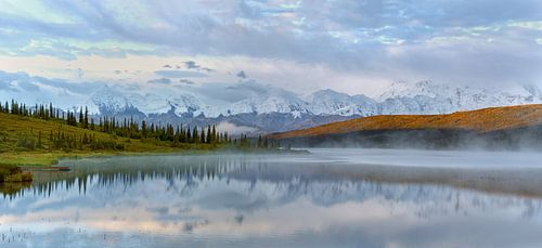 Denali berg in Alaska van Menno Schaefer