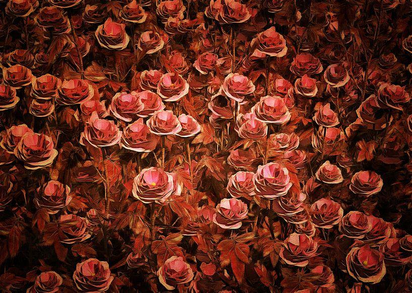 Rozen - roze rozen van Jan Keteleer